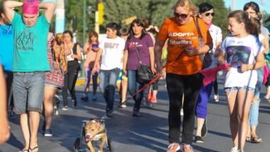Muchas personas asistieron a la marcha con sus mascotas y los típicos pañuelos color anaranjado.