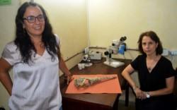 Marta Fernández y Yanina Herrera, investigadoras del Conicet.