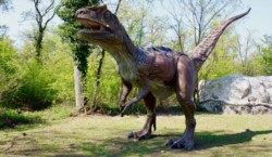 El dinosaurio depredador de gran tamaño más antiguo procede de los Alpes italianos y vivió hace 198 millones de años.