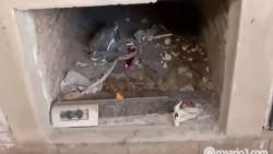 Una mujer fue a visitar la tumba de su padre en Rosario pero el cajón, el cuerpo y el mármol de la tumba