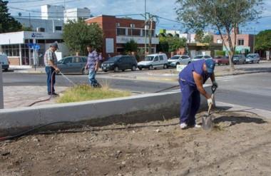 Verde. Los operarios del municipio capitalino se esfuerzan por embellecer el espacio público.