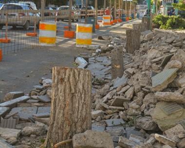Talados. La imagen de los árboles perimetrales de la plaza talados encendió la polémica entre los vecinos.