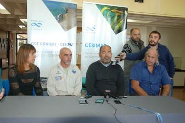 Dans,  Coscarella, Cruses  y Crespo pidieron tiempo para tratar de determinar la causa del varamiento masivo.