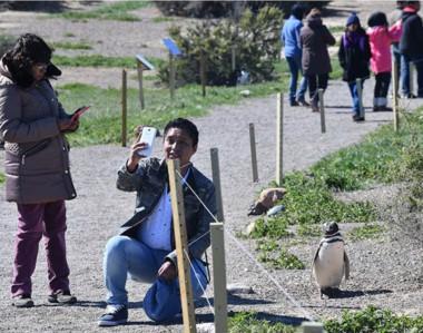 Desde Turismo trabajan sobre medidas para que no haya tantos turistas en simultáneo dentro de la Colonia.