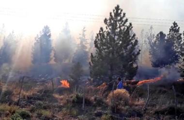 El  fuego avanzaba por un sector de  arboledas y pastizales altos, según el reporte desde el lugar.