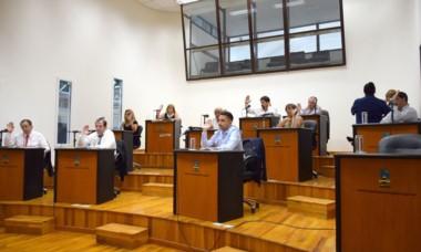 La sesión en el Concejo Deliberante de Comodoro Rivadavia.