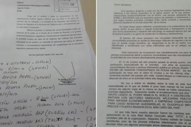 Presentación. El texto que el diputado de Convergencia reveló ante el organismo recaudador nacional.