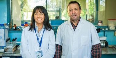 Silvio Cravero y María Cerón Cucchi, del Instituto de Biotecnología del INTA Castelar.