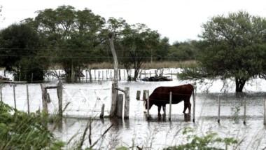 El temporal que azotó esta semana a la provincia de Entre Ríos golpea fuerte en varios pueblos donde los arroyos y cauces de agua se desbordaron por las intensas lluvias.