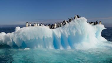 Con una superficie que duplica Estados Unidos, la Antártida está cubierta de suficiente hielo como para elevar el nivel de los océanos en casi 60 metros.