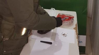 Las semillas fueron secuestradas por disposición del Juzgado Federal.