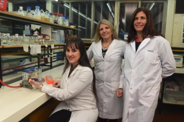 Las científicas del Conicet y de la Universidad Nacional de Rosario (UNR), Alejandra Mussi, Pamela Cribb, y Marisel Tuttobene