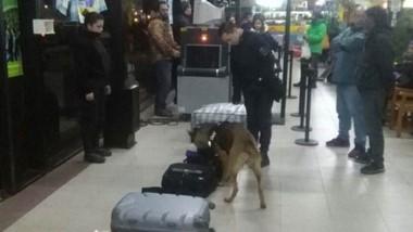 La droga había llegado a la terminal de colectivos de Esquel escondida en bolsas de plástico y de equipaje.