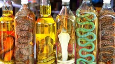 El licor de serpiente en China es una bebida muy popular con supuestas cualidades curativas y energéticas.