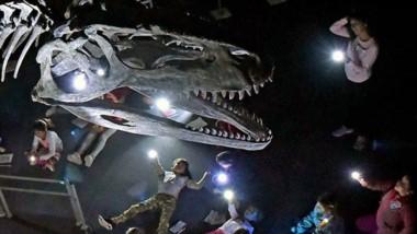 Chicos de entre 6 y 11 años experimentaron una divertida noche y durmieron en la sala de los dinosaurios.