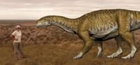 """Ingenta prima ( la """"primera inmensa"""", en latín) una nueva especie de dinosaurios herbívoros de 205 millones de años de antigüedad."""