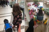 Lola junto a Petro, su perro de asistencia (Fotos: Facebook Laura Fernández Lugli)
