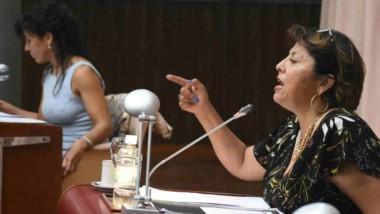Perfil. En primer plano, la diputada Navarro y detrás, su colega Cecilia Torres Otarola, en plena sesión.