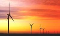 El Parque Eólico Manantiales Behr de 100 MW de potencia, que se inaugurará próximamente en Chubut, aportará energía a la planta de Toyota en Zárate. (Archivo).