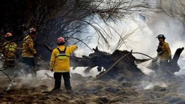 Desde muy  cerca. Los bomberos en plenas maniobras tendientes a aplacar los focos que se expandieron entre los árboles y los pastizales.