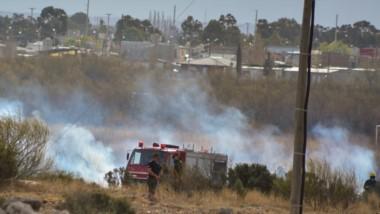 Llamas. El fuego alcanzó dimensiones importantes y  varias dotaciones de Bomberos debieron intervenir.