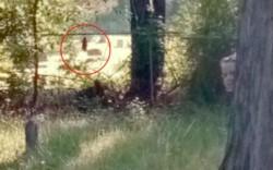 Los internautas localizaron un segundo fantasma, al fondo de la misma fotografía.