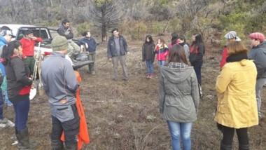 Bosques e Incendios lleva adelante un Plan Anual de Restauración.