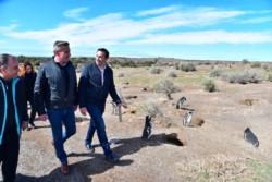 El gobernador Arcioni junto al intendente de Trelew, Adrián Maderna, recorrieron la reserva de Punta Tombo.