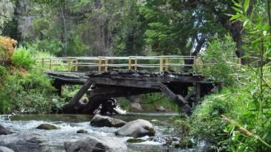 Un lugar único para vacacionar en Chubut. El Parque Nacional Los Alerces es una de las bellezas naturales que más eligen los visitantes durante la temporada de verano.