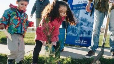 El momento de plantar los árboles en la plaza La Amistad.