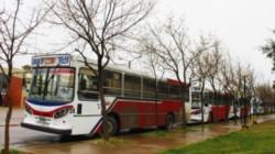 Chubut recibe al año 382 millones de pesos para subsidiar el transporte público de pasajeros.