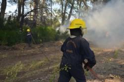 Más de 200 personas trabajaron en el incendio (foto @maurocordillera)