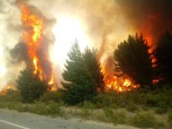 Brigadistas combaten un incendio que cruzó la ruta 40 en Epuyén. (Foto: Jorge Bonansea).
