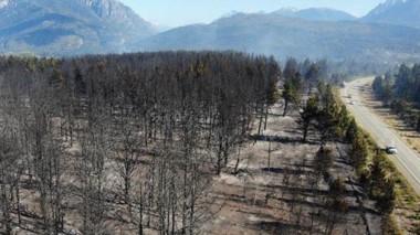 Cenizas. En Epuyén unas 550 hectáreas fueron arrasadas por el  voraz incendio e investigan las causas. ( foto: Rodrigo Aguilera)