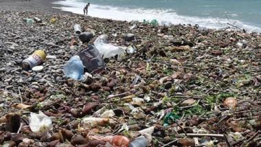 Basura. Así luce Playa Unión cuando llega el pescado desechado.