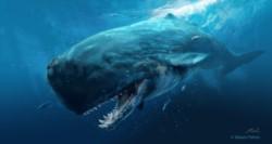 """""""Estamos ante la presencia también en los mares del Atlántico sur de esta Moby Dick que se alimentaba de ballenas y otros vertebrados""""."""