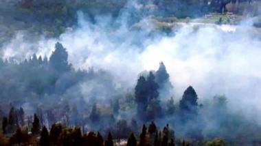Se está trabajando para controlar el fuego que afecta la zona sur.