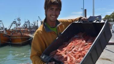 Los puertos chubutenses representaron el 30 por ciento de las capturas en lo que va del año.