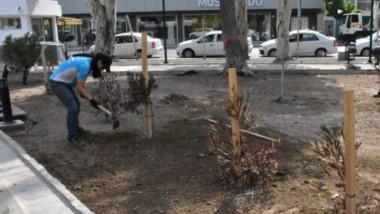 Los trabajos sobre la plaza céntrica avanzan a un muy buen ritmo para poder dejarla en condiciones.