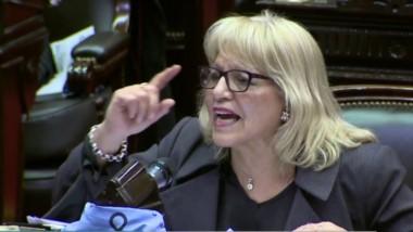 Diputada Rosa Muñoz- Frente Renovador - Chubut