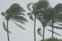 La velocidad del viento en algunas regiones de la Tierra aumentó un 7% en la última década.