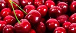 En Chubut se exportan más de 1 millón 700 mil kg de cerezas por año.