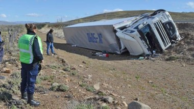 El conductor de un camión de origen chileno volcó ayer. Iba con animales en su carga por la ruta nº 40.