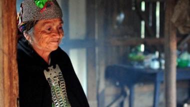Creencias. Los mapuches tendrán la posibilidad de no perder las experiencias de sus tradiciones en salud.