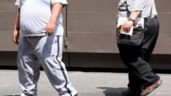 El incremento de la tasa de obesidad en la población incrementa las emisiones de gases de efecto invernadero.