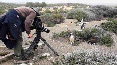 El Área Natural Protegida recibió fotógrafos y equipos de filmación de cuatro continentes.