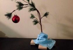 Carísimo. Armar el árbol de Navidad con su respectiva decoración tendrá un costo de $8.769 este año al registrar un incremento de 59% respecto de 2018, indicó hoy un informe privado.