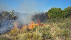 El fuego sigue haciendo estragos entre los pastizales. (fotos: F Bonancea).