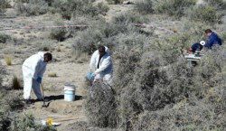 El doble crimen narco conmocionó a Puerto Madryn