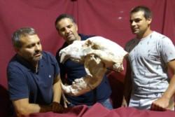 Los paleontólogos que retiraron los restos del animal junto a un gráfico a esca la que muestra el tamaño del oso.